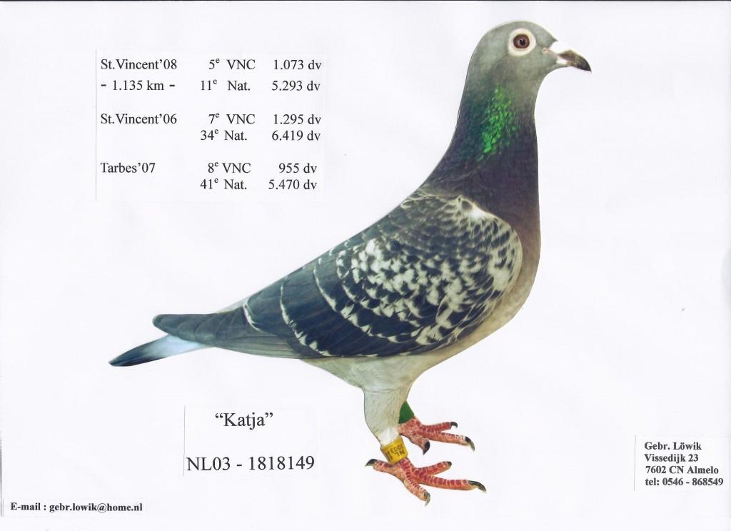 NL03-1818149卡佳