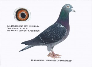 NL96-5609309 Princess of Darkness